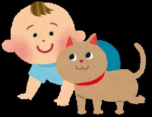 赤ちゃんと猫の癒し系