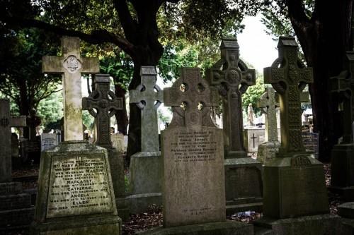 ハロウィンの墓地hollar